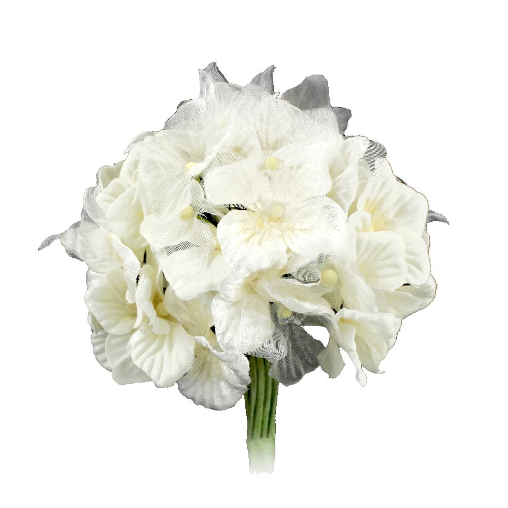 Hortensia Hydrangea 10 cm crudo