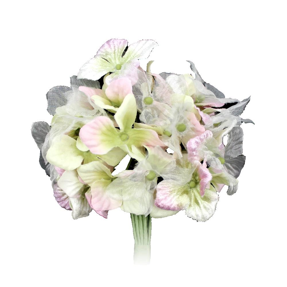 Hortensia Hydrangea 10 cm rosa y verde