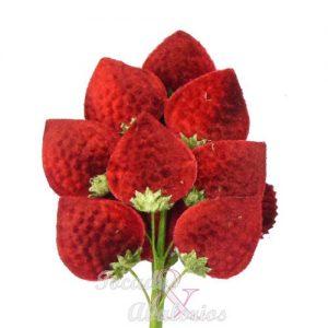 Flor fresa, 18x10 cm