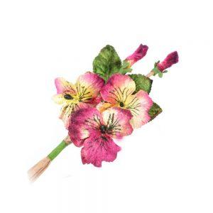 Flores de terciopelo 14×9 cm buganvilla