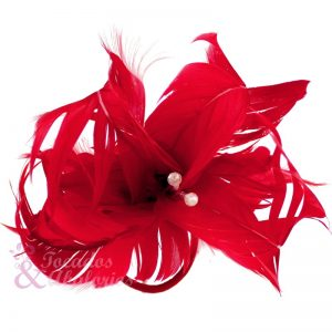 Flor de plumas