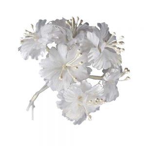 Florecillas con pistilos blanco