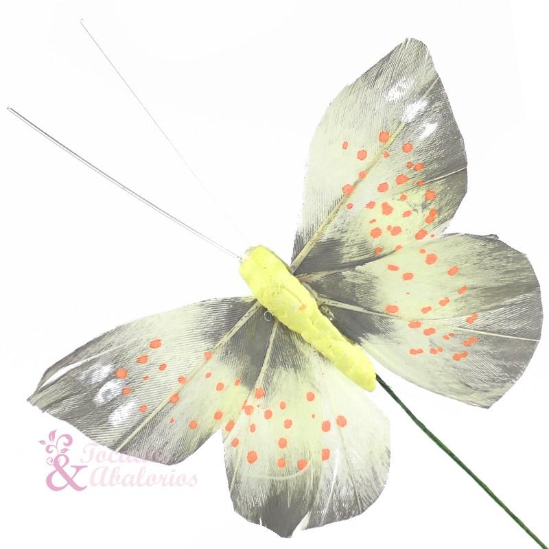 Mariposa Colias