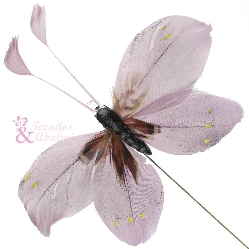 Mariposa pluma antena