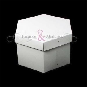Caja Blanca 20x12cm