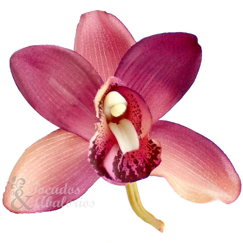 Orquídea Luz