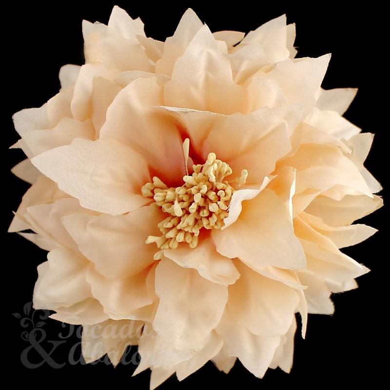 Flor Andrea