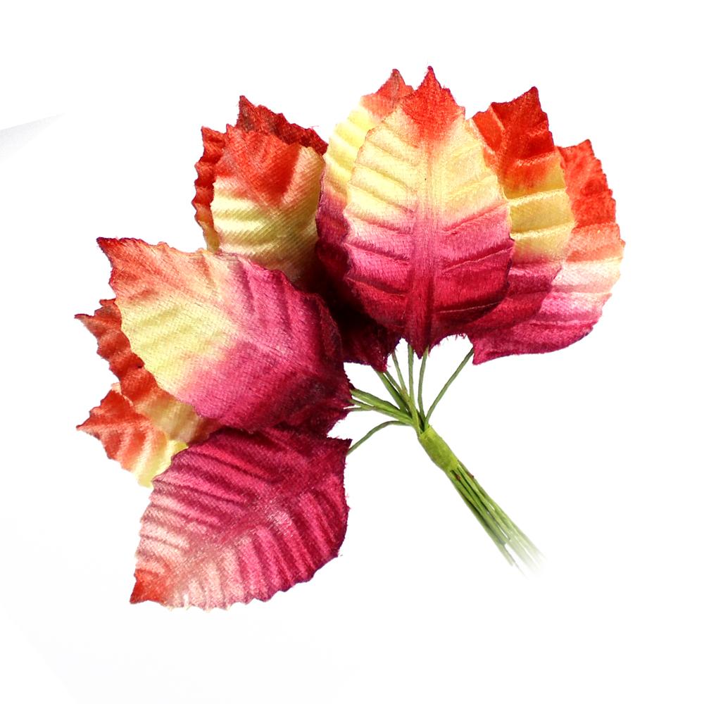 12 HOJAS TALLÍN multicolor