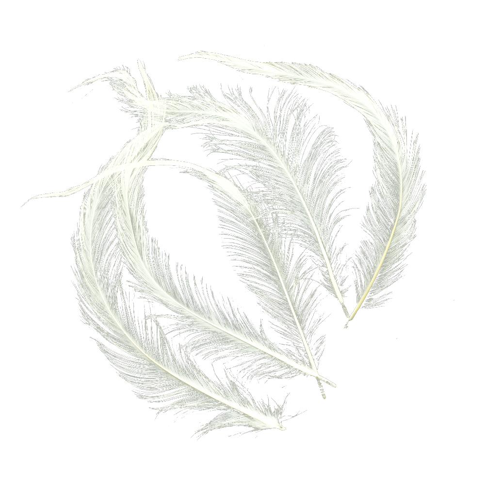 Bolsa Pluma Gallo quemada crudo