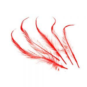 Bolsa Pluma Gallo quemada rojo