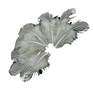 Bolsa Plumas faisán plata 8-10 CM gris plata