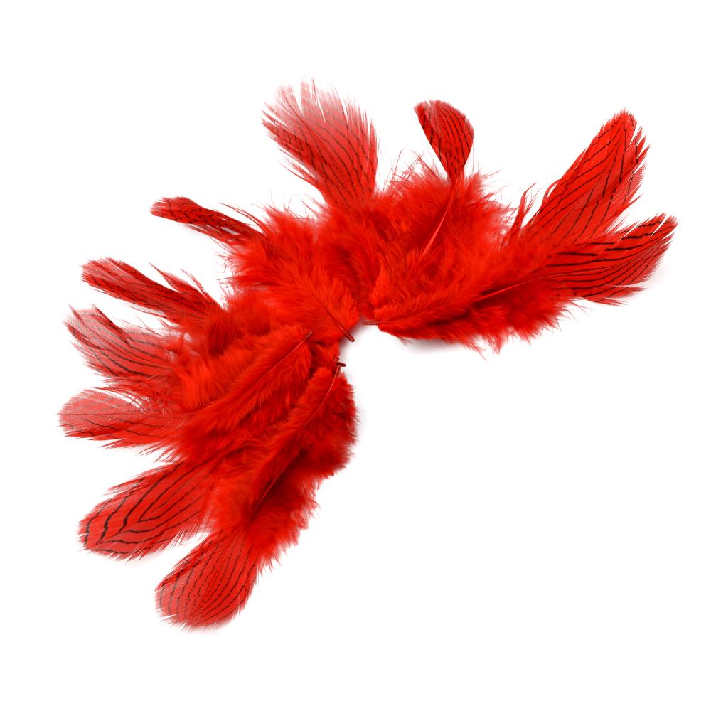Bolsa Plumas faisán plata 8-10 CM rojo