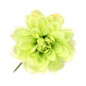 FLOR DALHIA ANTEA verde