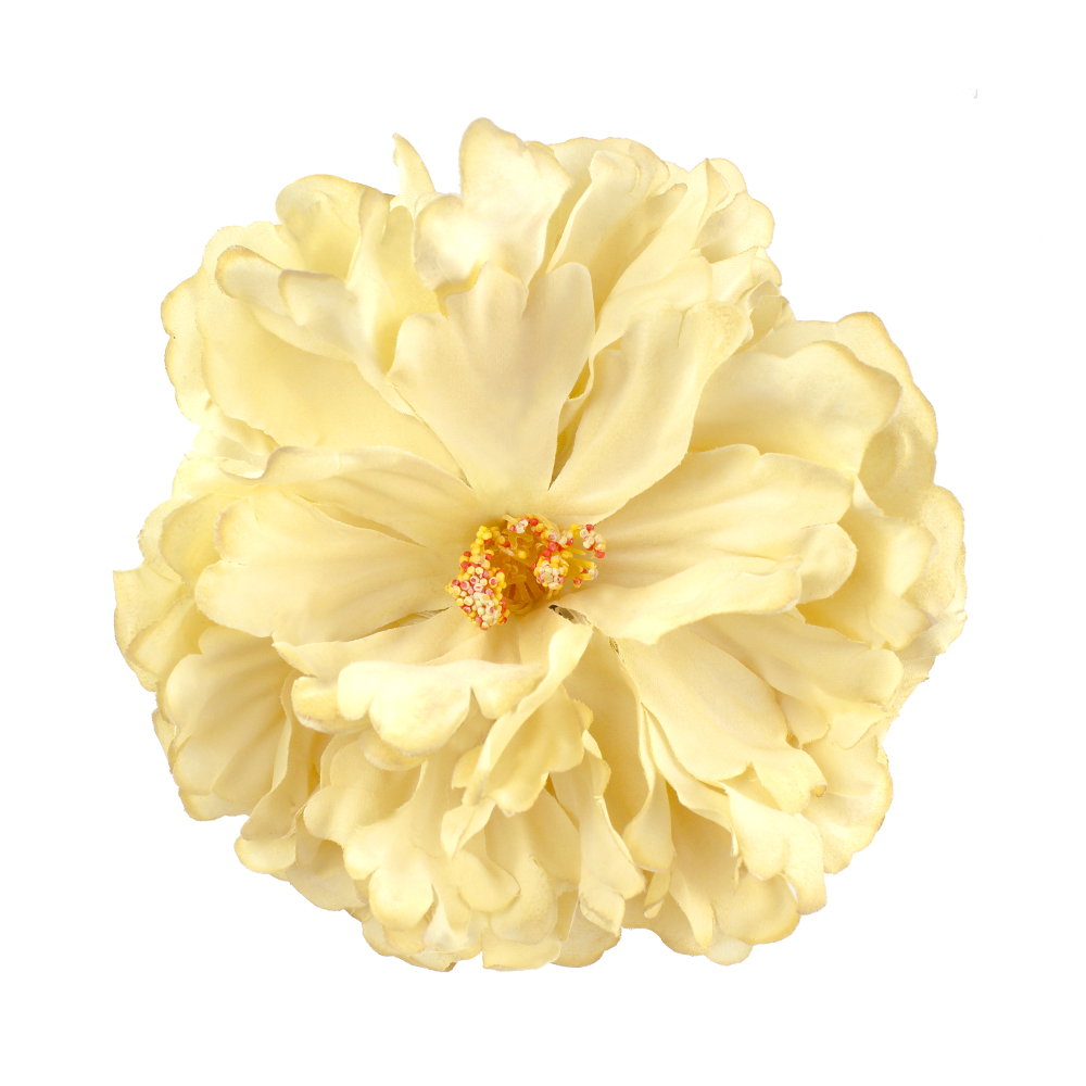 Flor Mirra 18 cm crudo
