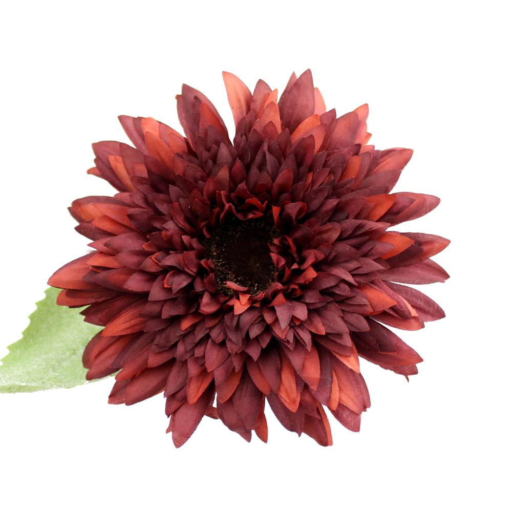 Flor Scarlet 11-14cm granate