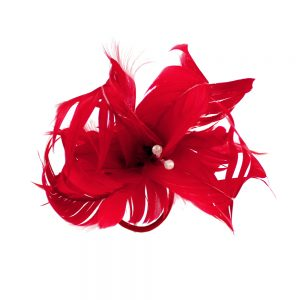 Flor de plumas rojo