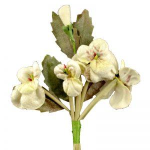 Florecillas Terciopelo buganvilla crudo