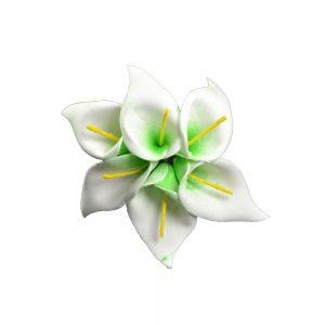 Gladiolo de foam verde