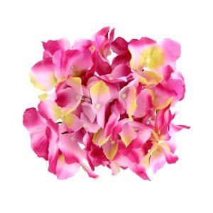 Hortensia Hydrangea 18 20 fucisa y rosa