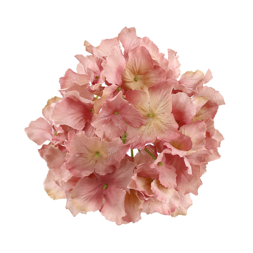 Hortensia Rizada rosa maquillaje