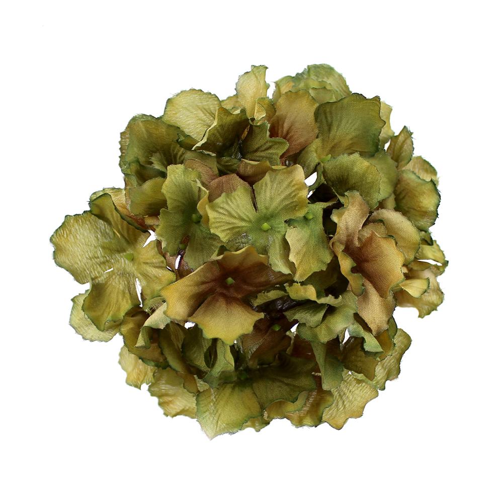 Hortensia Rizada verde hoja