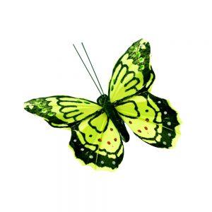 Mariposa Plumas 9 cm verde