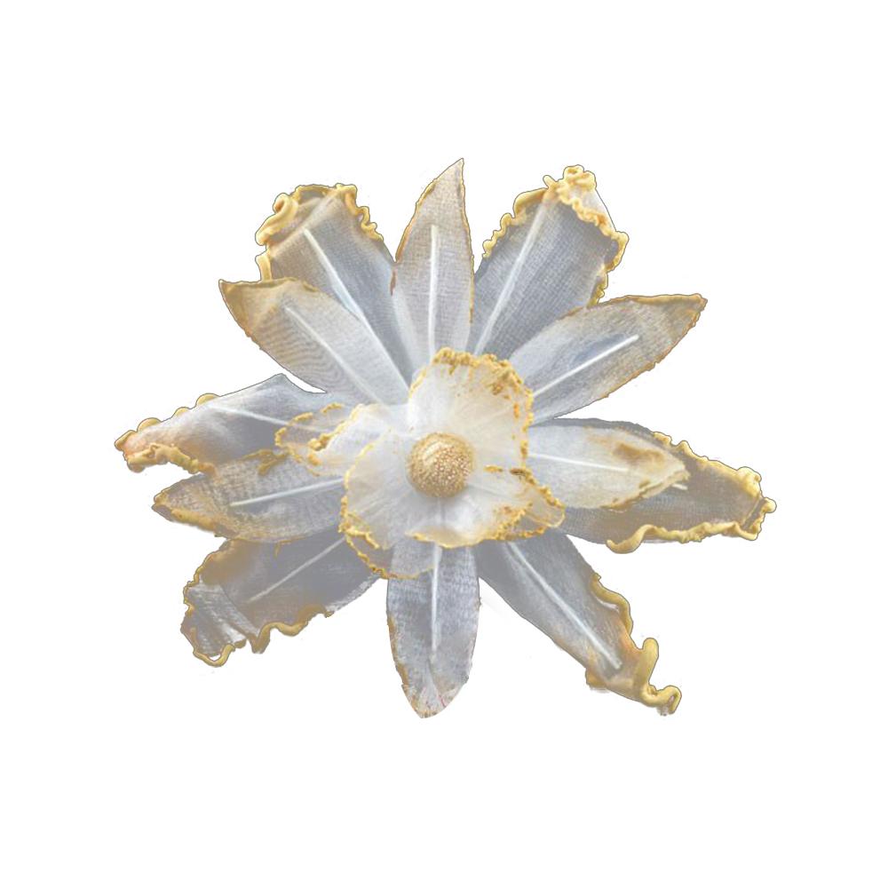 Orquidea perfilada de organdí beige