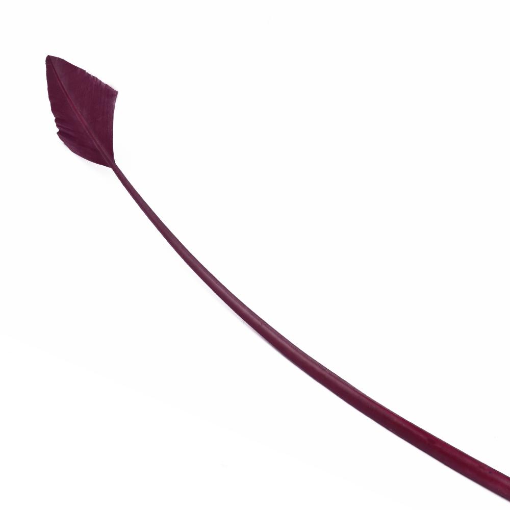 Pavo flecha 30 40 cm vino