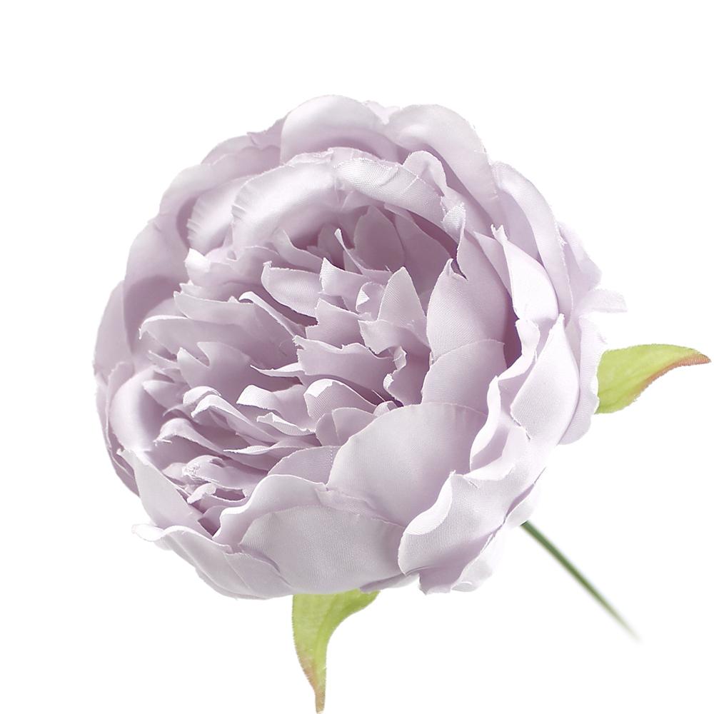 Peonía Collect lila II
