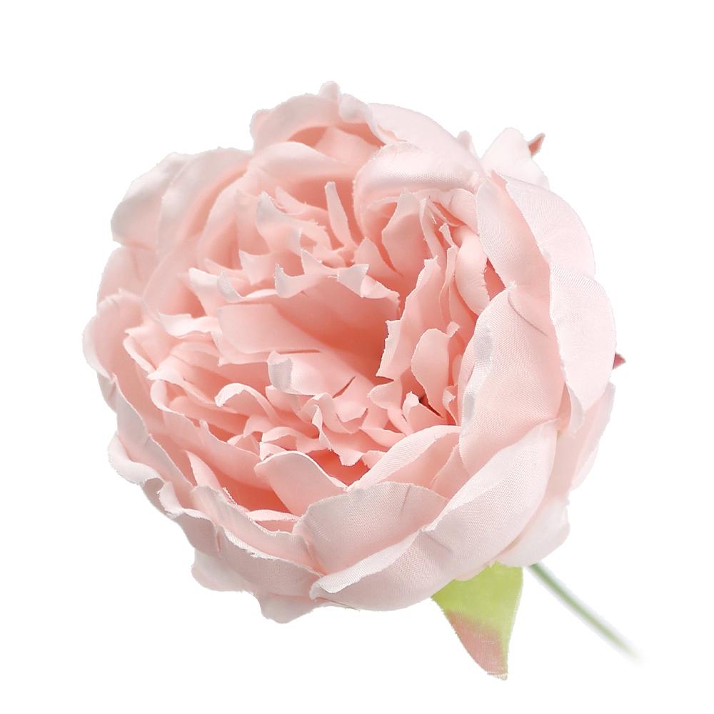 Peonía Collect rosa palo