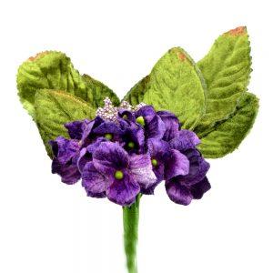 Petunia de terciopelo MORADO