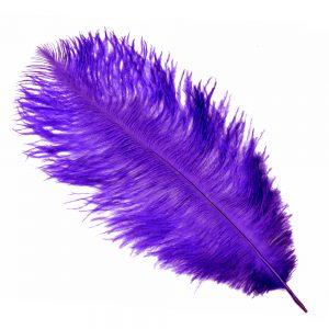 Pluma Avestruz 25 30 cm añil