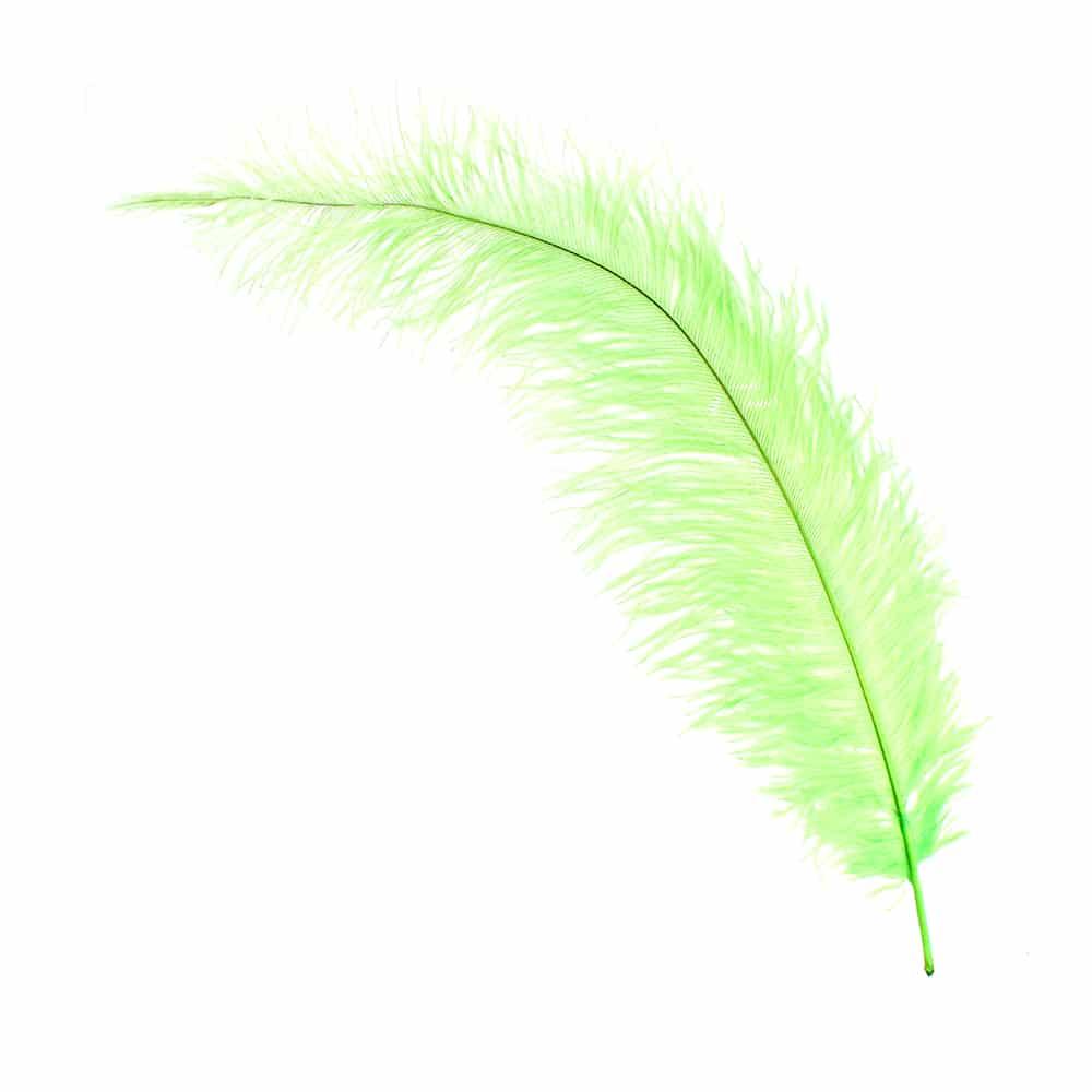 Pluma Avestruz 35 pistacho