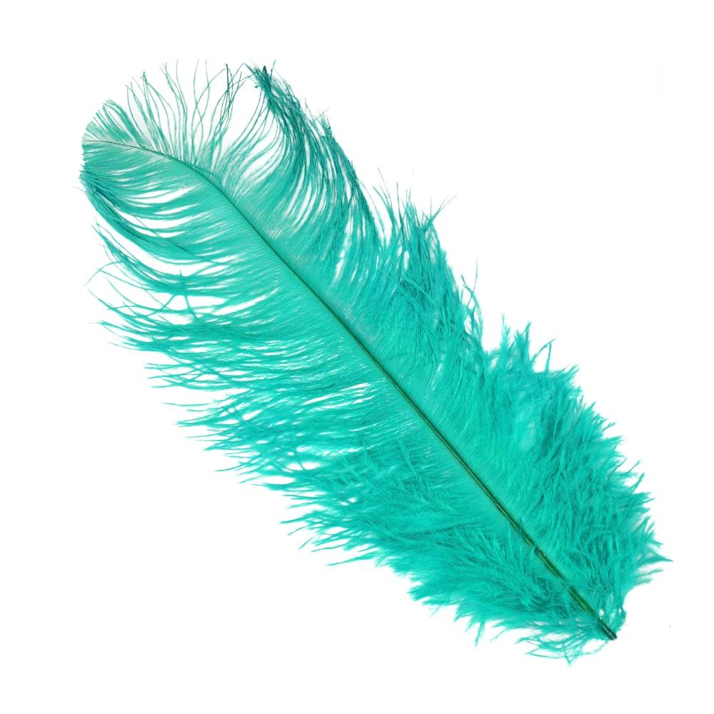 Pluma Avestruz 35 verde topacio