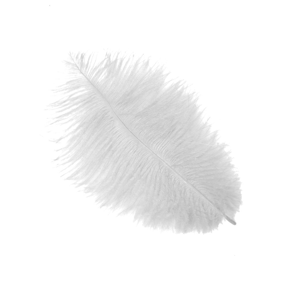 Plumas Avestruz 10 15 blanco