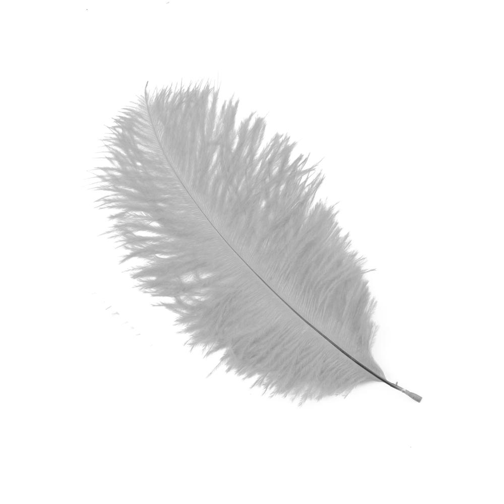 Plumas Avestruz 10 15 gris