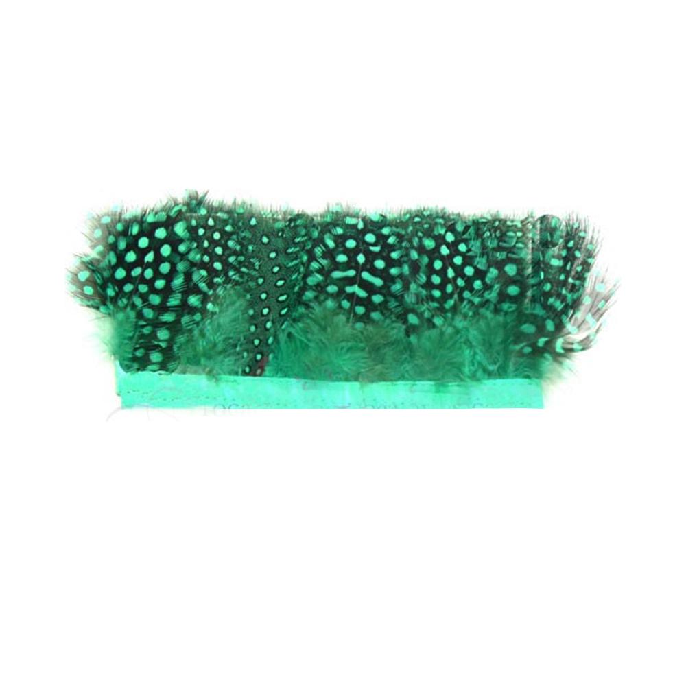 Plumas Fleco Guinea verde agua