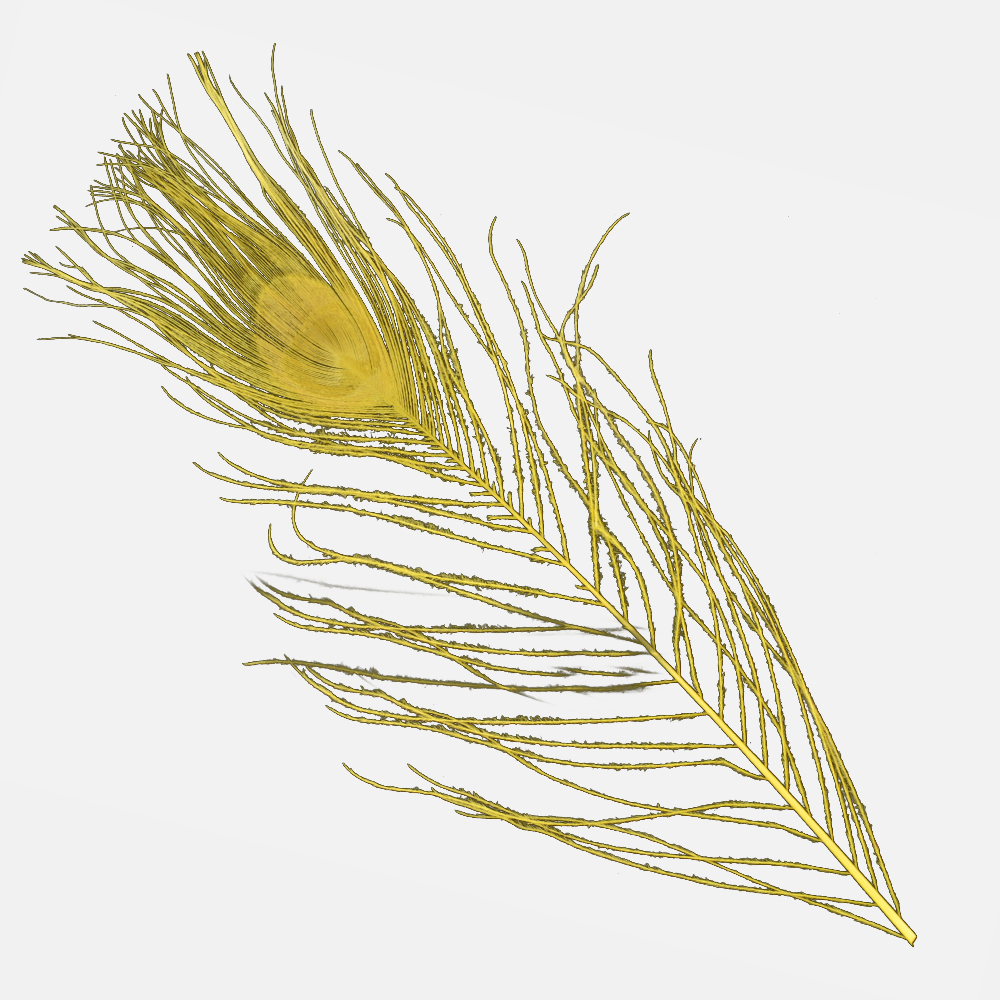 Plumas Pavo Real Colores 25 cm mostaza