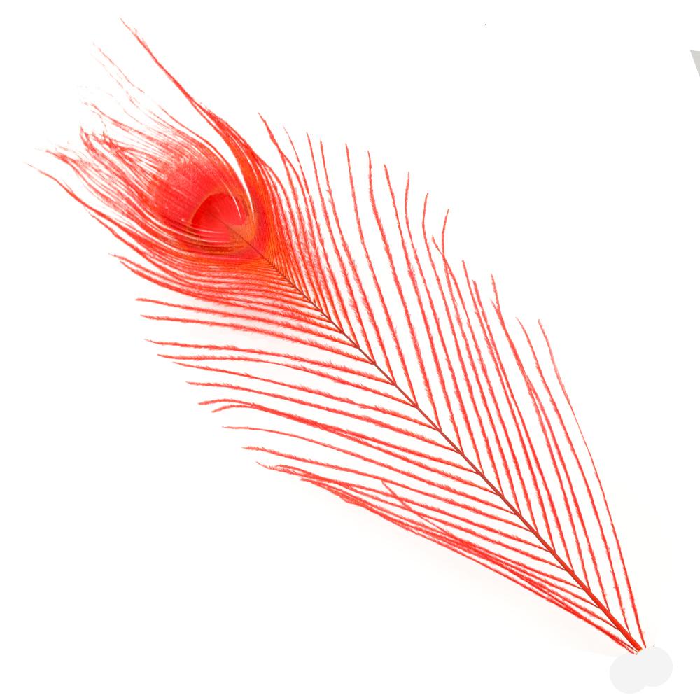 Plumas Pavo Real Colores 25 cm rojo