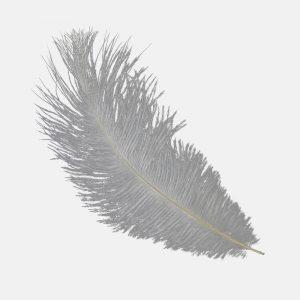 Plumas avestruz 15 20 cm gris plata