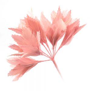 Pomo Hortensia 20 cm rosa