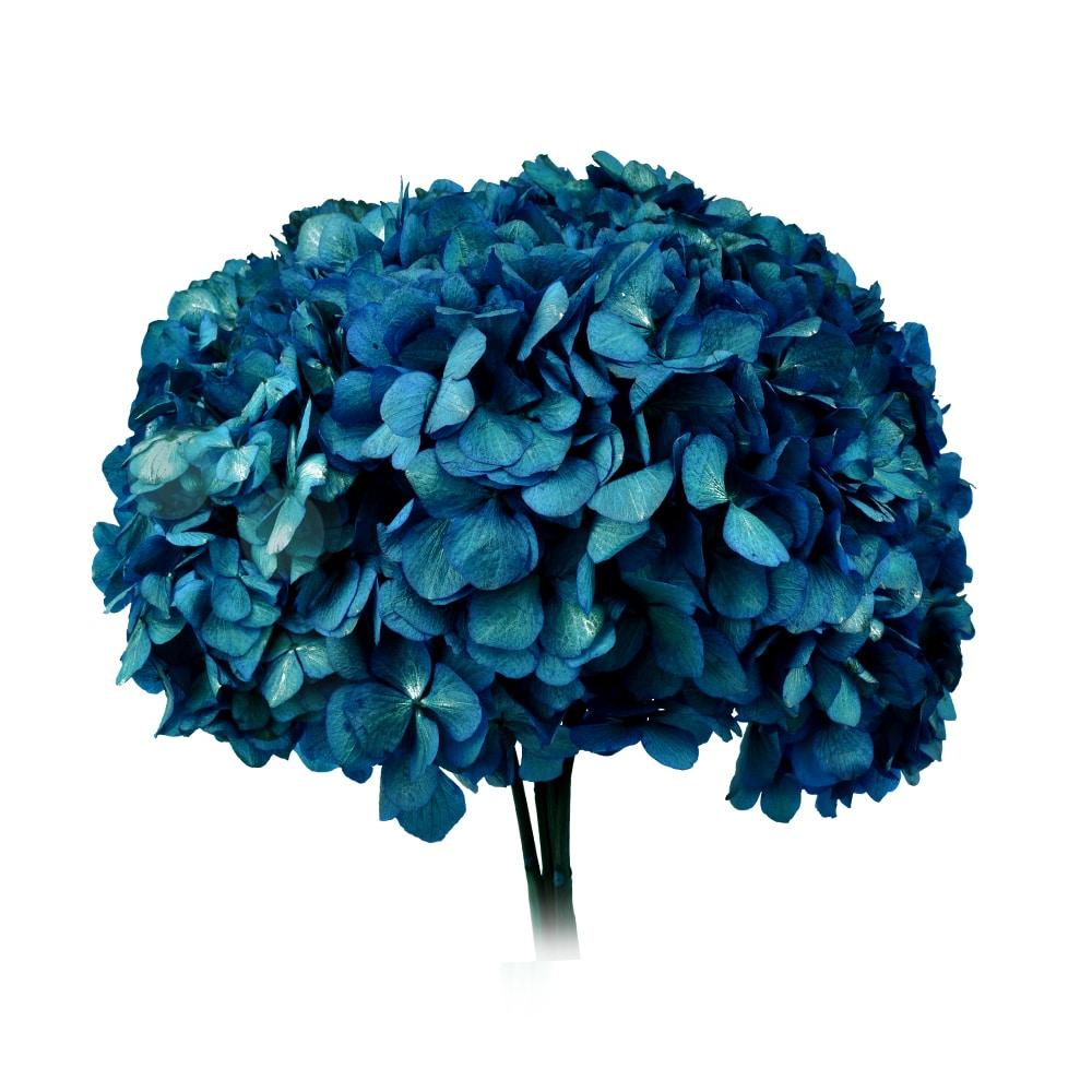 RAMO HORTENSIAS PRESERVADAS azul oscuro