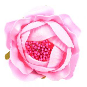 ROSAPOLA 7 cm rosa