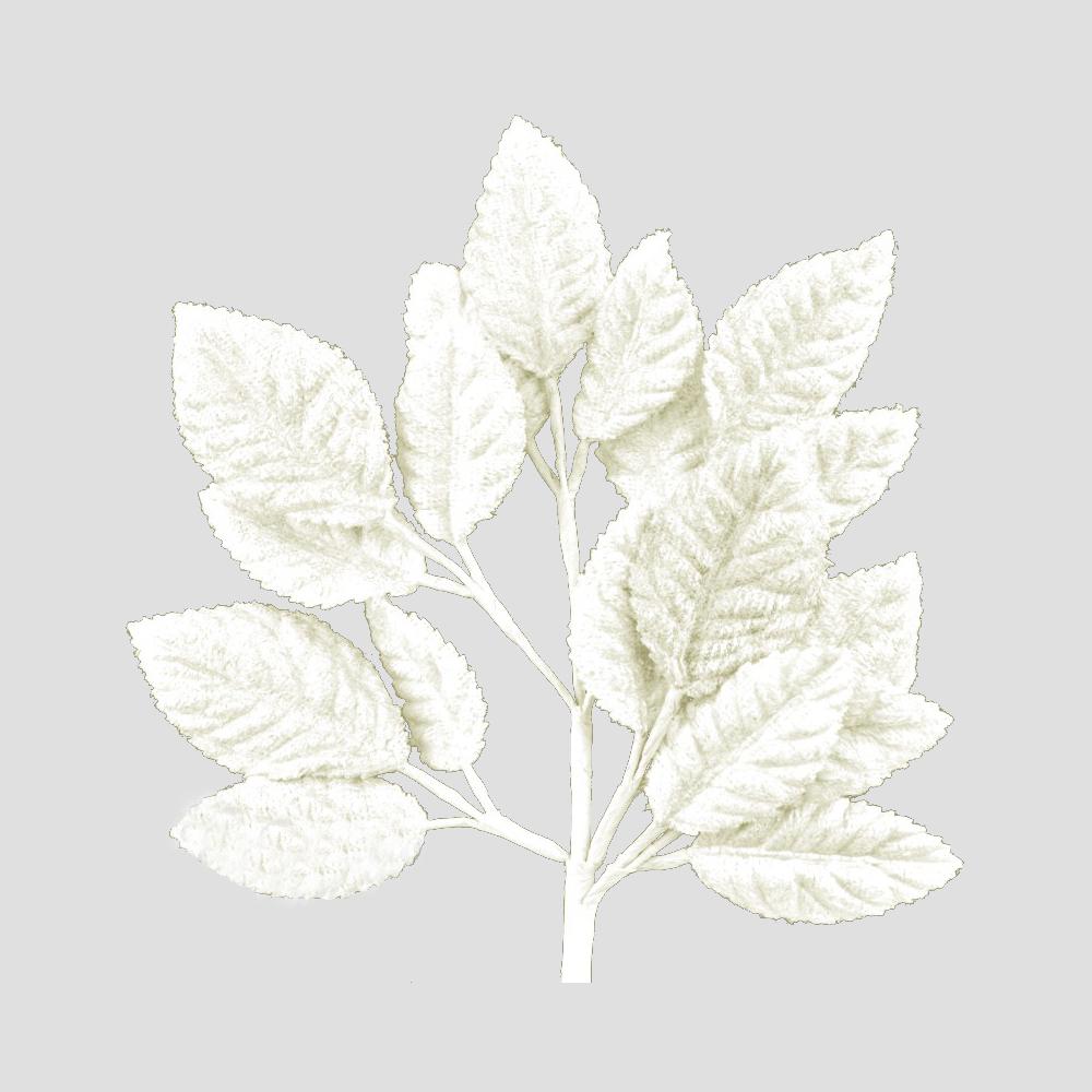 Ramillete Hojas terciopelo 21 cm crudo