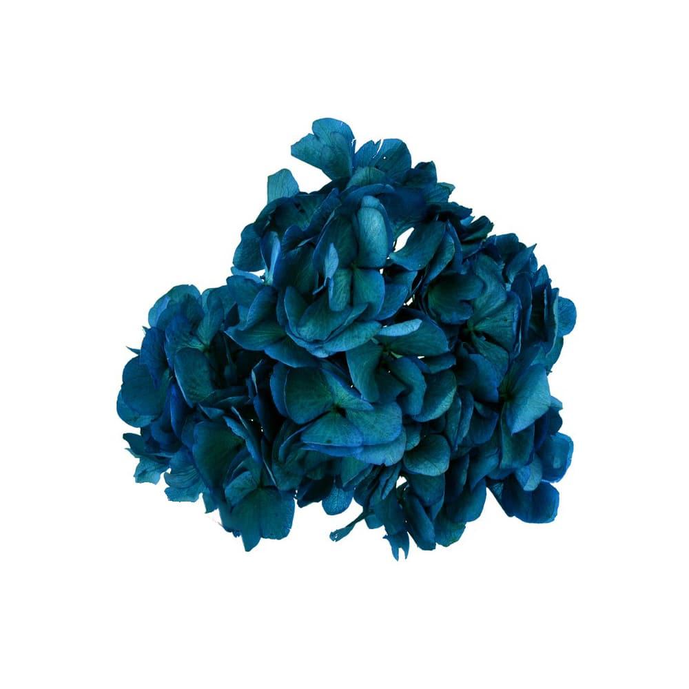 Ramillete Hortensia preservada azul