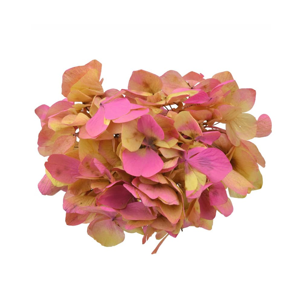 Ramillete Hortensia preservada dorado y buganvilla