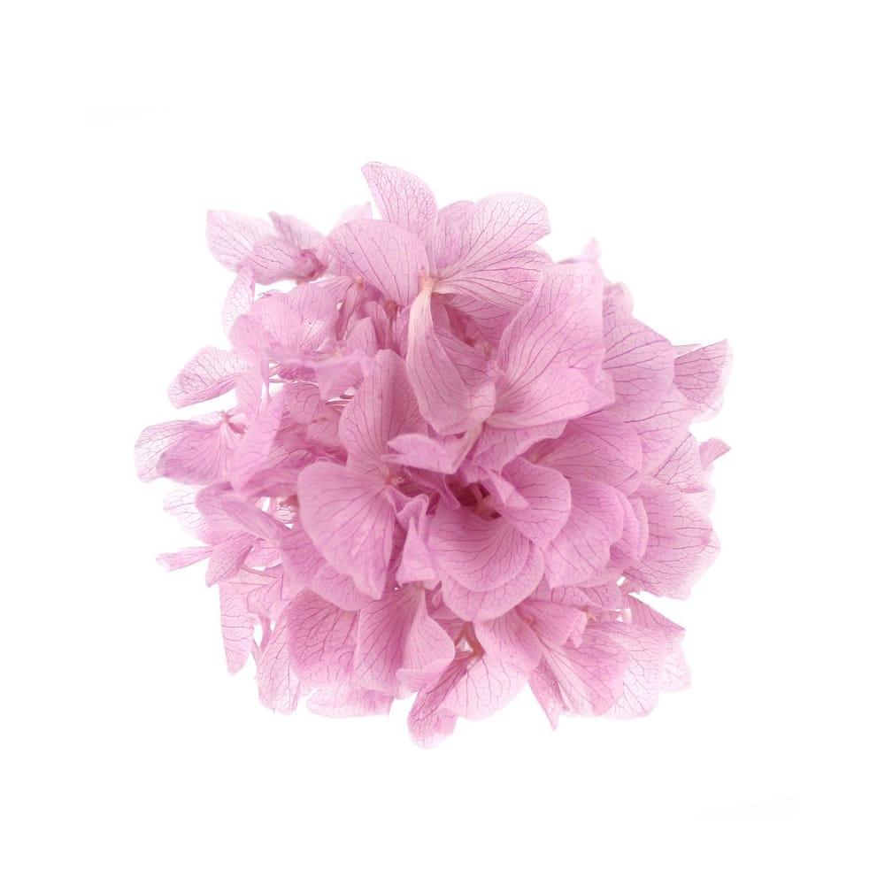 Ramillete Hortensia preservada rosa maquillaje