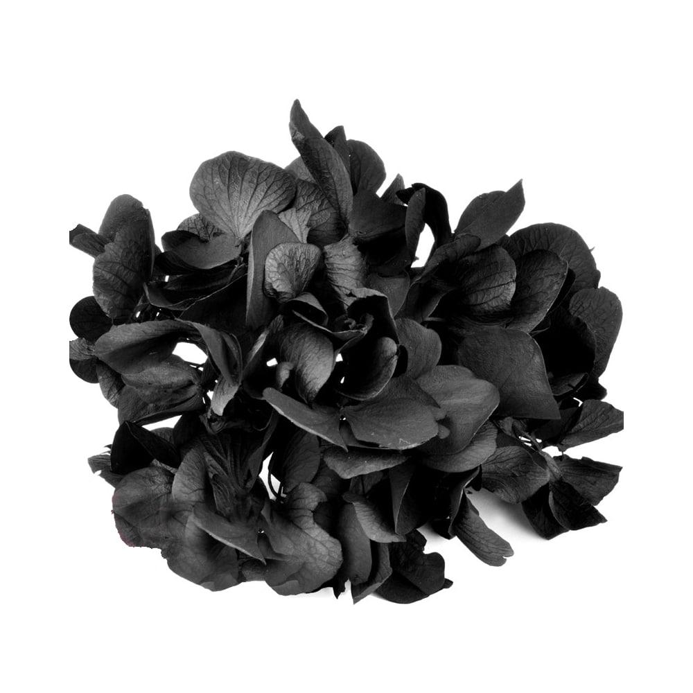 Ramillete Hortensia preservada negro
