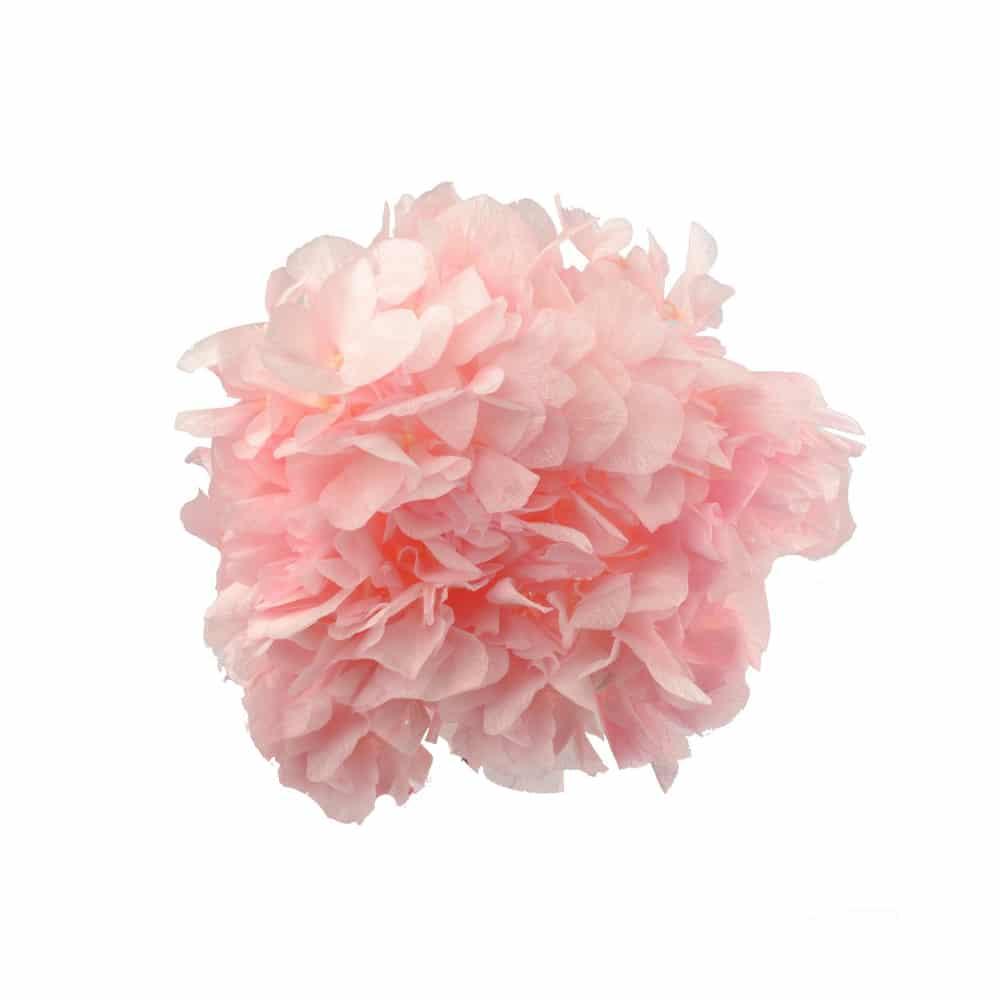 Ramillete Hortensia preservada rosa palo I