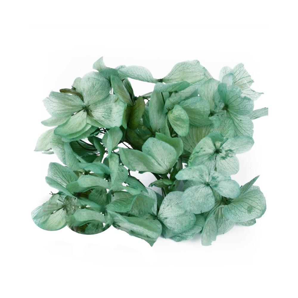 Ramillete Hortensia preservada verde botella